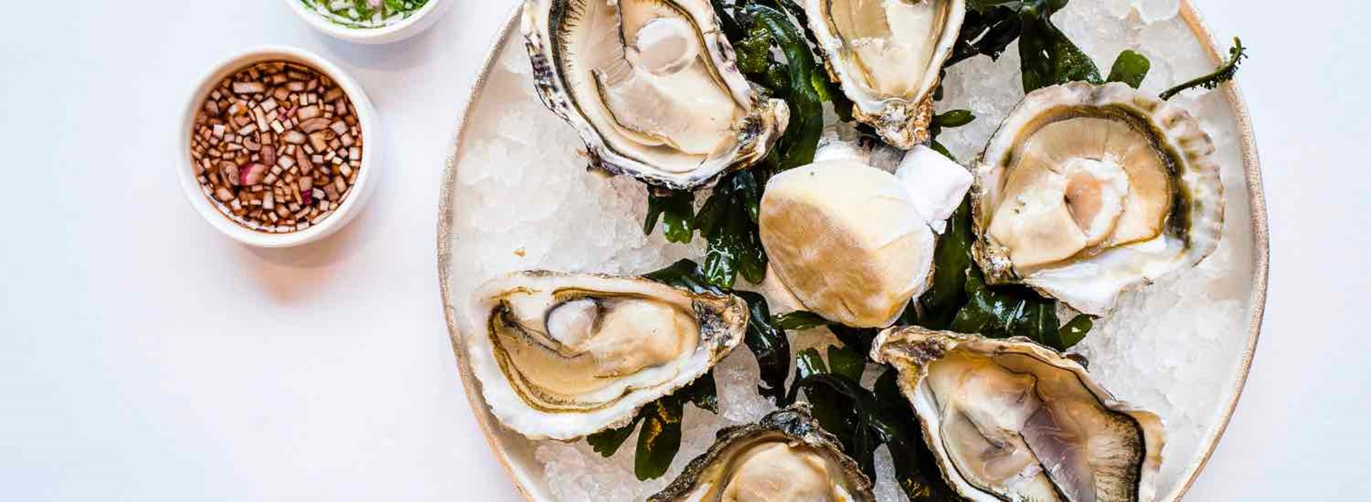 scotts oysters gift cards